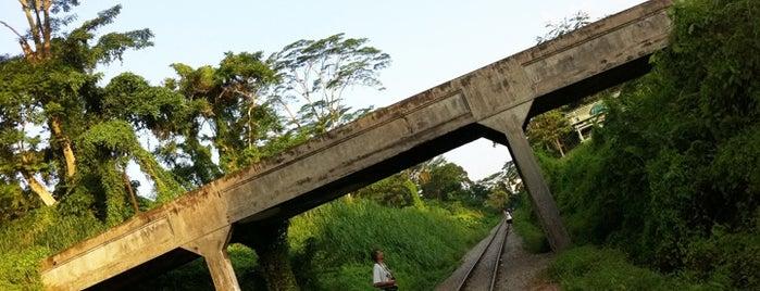 Stone Bridge @ Bukit Timah KTM Railway is one of The Rail Corridor.