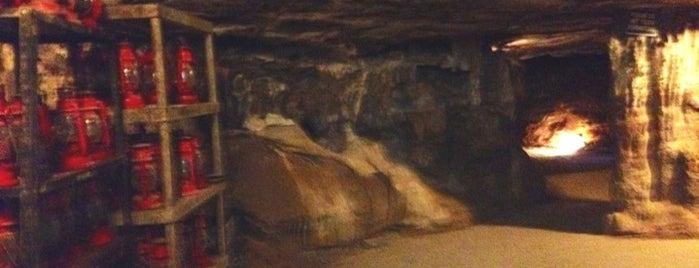 Raccoon Mountain Caverns is one of Orte, die Shamika gefallen.