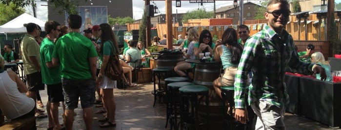 Celtic Gardens is one of Houston's Best Beer - 2013.