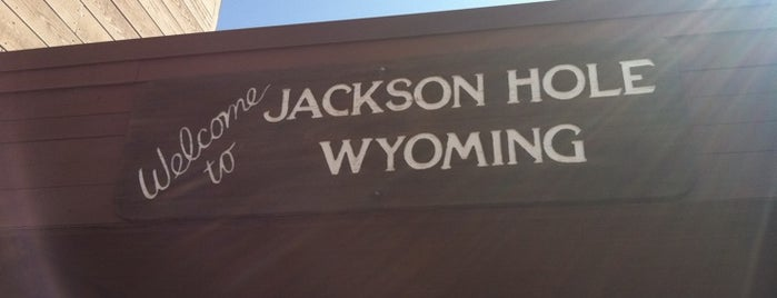 Jackson Hole Airport (JAC) is one of Where to Use Paperless Boarding Passes.