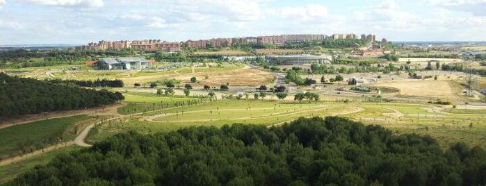 Parque forestal Cerro de Las Contiendas is one of Franさんのお気に入りスポット.