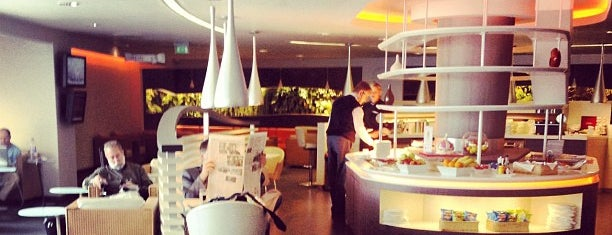 SkyTeam VIP Lounge is one of Airports and hotels I have known.