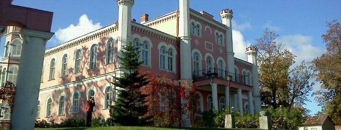 Bīriņu pils | Birini Castle is one of AtputasBazes.lv.