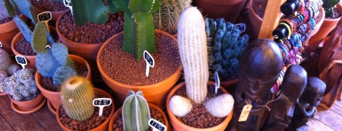 Danny de Cactus is one of Locais curtidos por Frank.