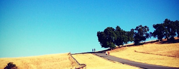 Stanford Dish Trail is one of SF..
