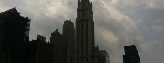 Woolworth Building is one of (architecture) in NYC.