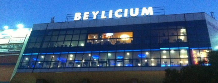 Beylicium is one of Locais curtidos por Neslihan.