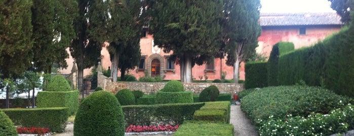 Vignamaggio is one of Chianti Classico Producers.