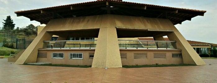 Kiosko Bosque Real is one of Lugares favoritos de Emmanuel.
