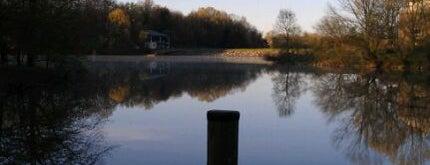 Lake Elkhorn is one of Robert : понравившиеся места.
