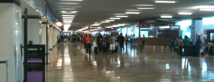Bandar Udara Internasional Guadalajara (GDL) is one of El Top de nuestros operativos.