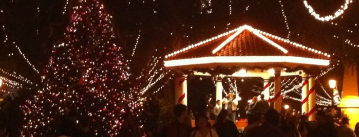 Nights Of Lights Festival is one of Restaurants in St Augustine.