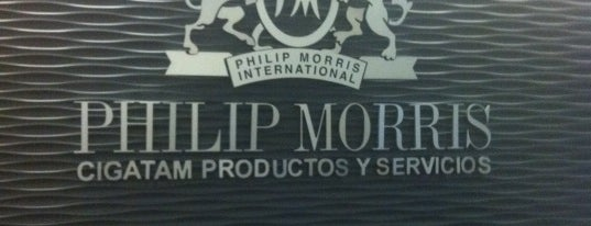 Philip Morris Polanco is one of Corps.