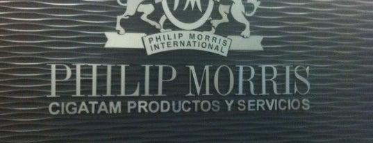 Philip Morris Polanco is one of Corps.