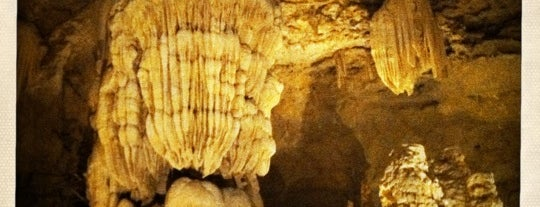 Natural Bridge Caverns is one of Historic San Antonio.