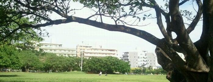 新都心公園 is one of Okinawa.