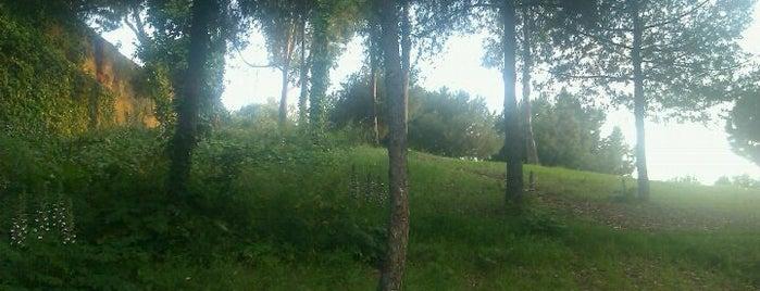 Parc de la Font Florida is one of Ruta a Sants-Montjuïc. La ruta verda.