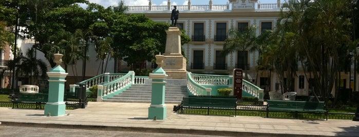 Parque Hidalgo is one of Merida.