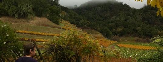 Skipstone Winery is one of Locais curtidos por Katherine.