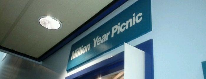 Million Year Picnic is one of Lugares favoritos de Nakki.