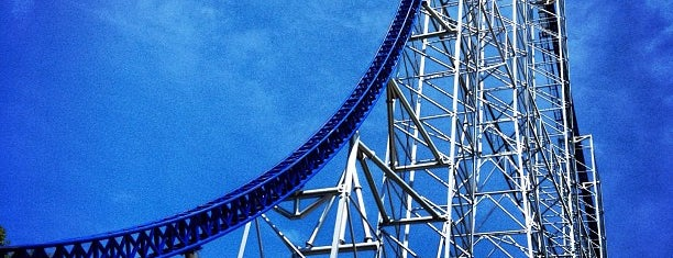 Millennium Force is one of National Rollercoaster Roundup.