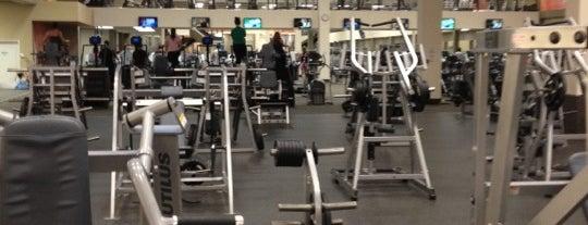 LA Fitness is one of Locais curtidos por Tarisa.