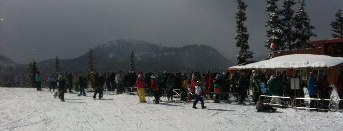 Mt. Washington Ski Resort is one of BC Ski Resorts.
