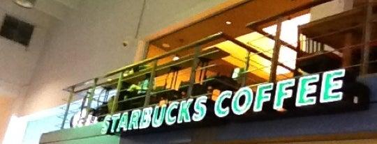Starbucks is one of I [Starbucks Coffee] You.
