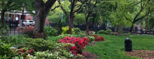 Tompkins Square Park is one of New York, my dear New York ll.