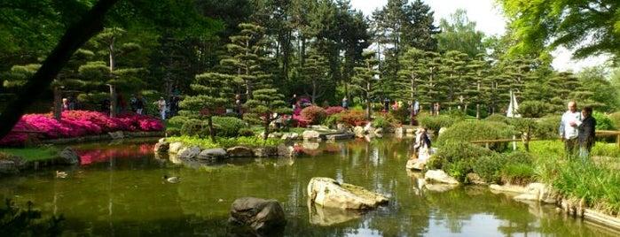 Japanischer Garten is one of Düsseldorf guide.