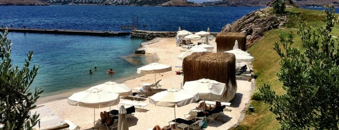 PalmaBeach is one of Bodrum.