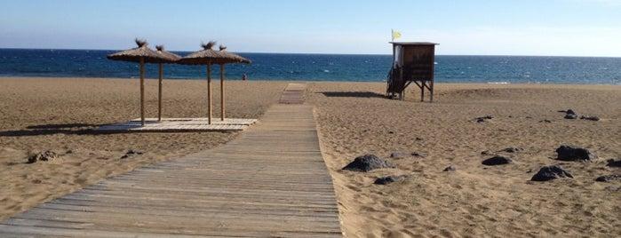 Playa de los Pocillos is one of Qué visitar en Lanzarote.