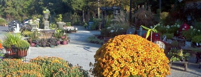 Garden Supply Company is one of North Carolina To-Do.