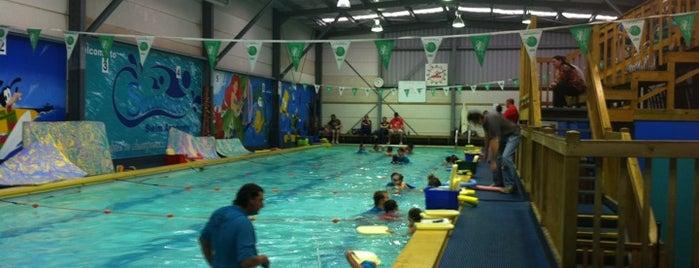 Shellharbour Swim Academy is one of สถานที่ที่ Barry ถูกใจ.