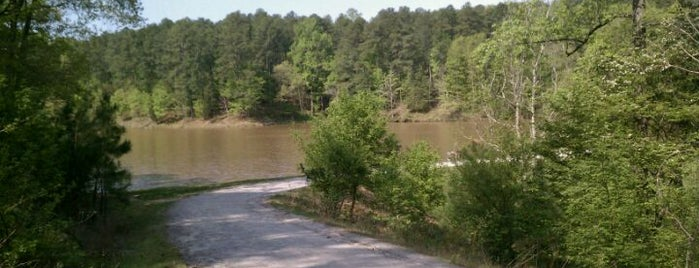 William B. Umstead State Park is one of Must-Visit Hiking/Running Trails.