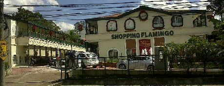 Shopping Flamingo is one of Alphaville.
