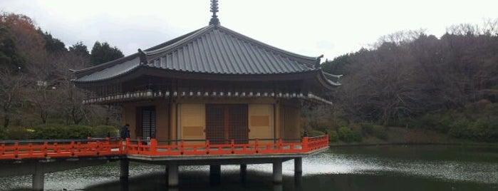 安倍文殊院 is one of Lieux qui ont plu à Saejima.