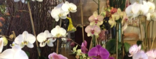 """East Village Florist is one of Our """"Young Guns"""" Favorite Shops in NYC."""
