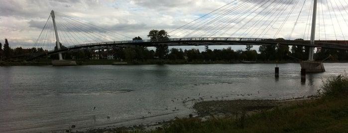 Passerelle Mimram - Brücke der zwei Ufer is one of Strasbourg.