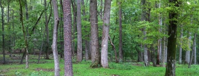 Annie Louise Wilkerson, MD Nature Preserve Park is one of Gespeicherte Orte von Olesya.