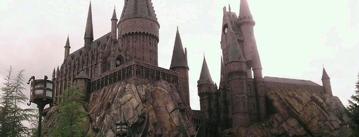 The Wizarding World Of Harry Potter - Hogsmeade is one of The Discerning Brit's Guide to Orlando, FL.