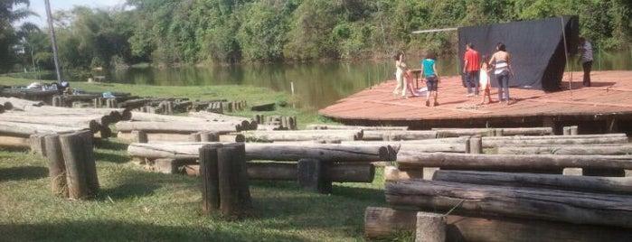 Parque Jardim Botânico is one of Locais curtidos por Clau.