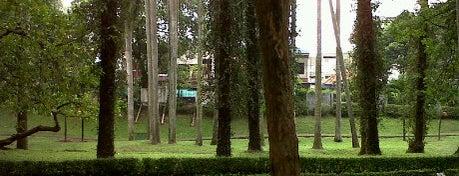 Taman Langsat is one of Go Green Jakarta.