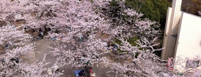 太田山公園 is one of 日本夜景遺産.