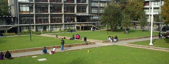 Universidad Católica de Temuco - Campus San Francisco is one of สถานที่ที่ Gabriela ถูกใจ.