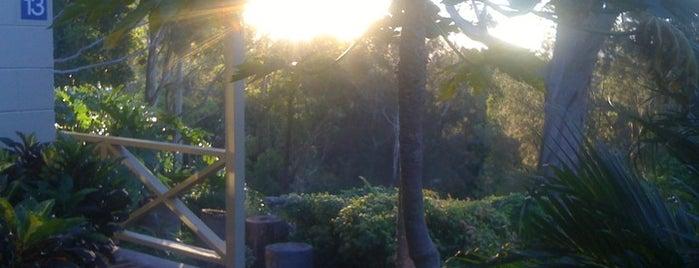 Pacific Palms Resort is one of Whitsundays 님이 좋아한 장소.