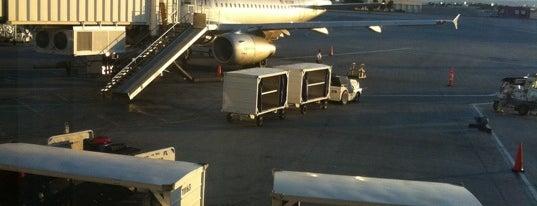 Harry Reid International Airport (LAS) is one of AIRPORT.