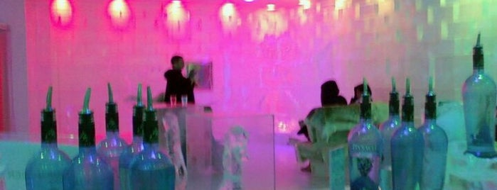 ICEBAR Orlando is one of Best Places to Check out in United States Pt 1.