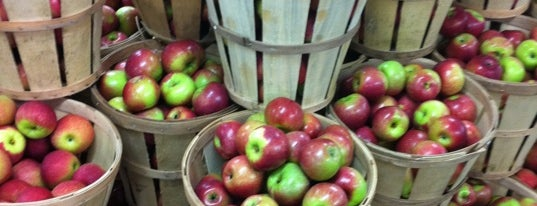 Rogers Orchards is one of adventures outside nyc.