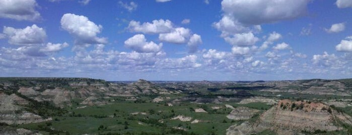Theodore Roosevelt National Park is one of Birds, Mountains, and Lakes, Oh My!.